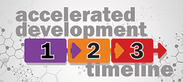 Accelerated Development Timeline